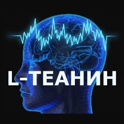 L-Theanine порошок